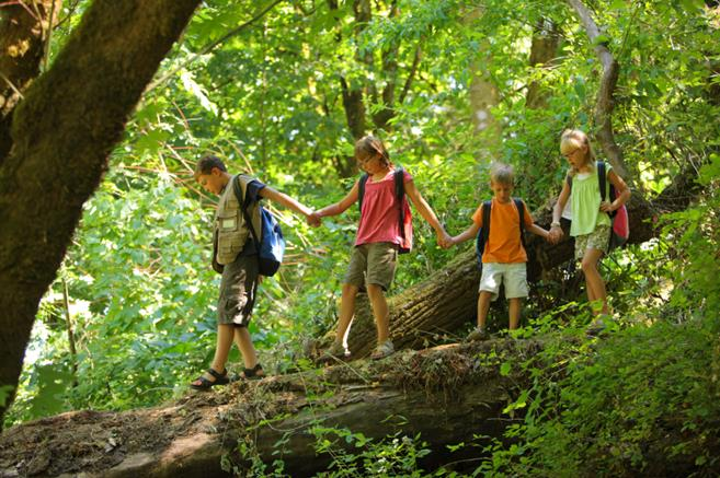 Kids walking in the forest